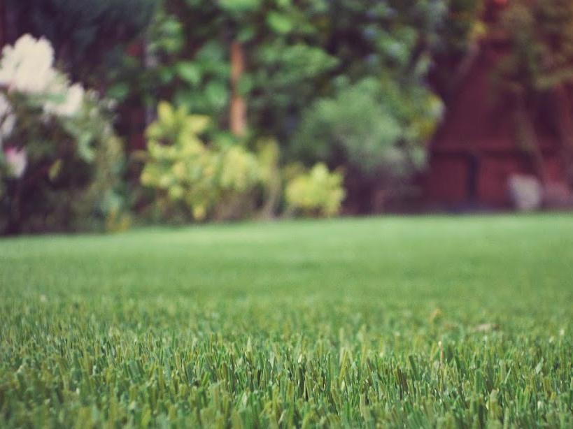 empire-carpets-artificial-grass